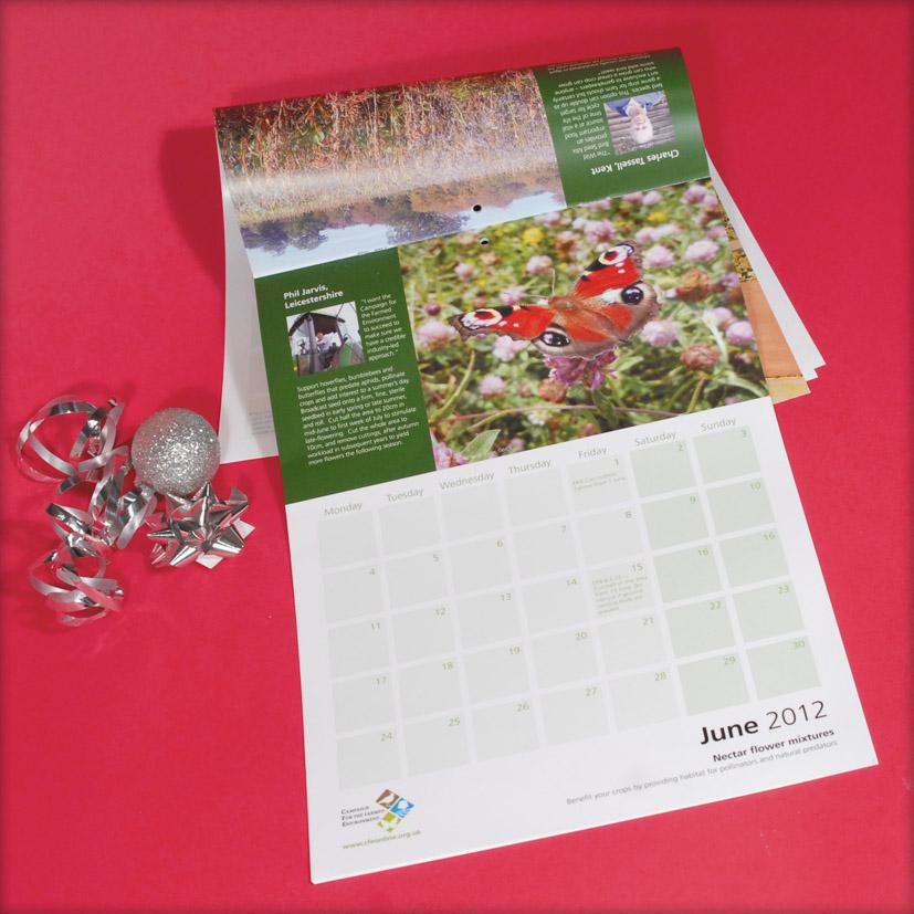 14 Month Calendars