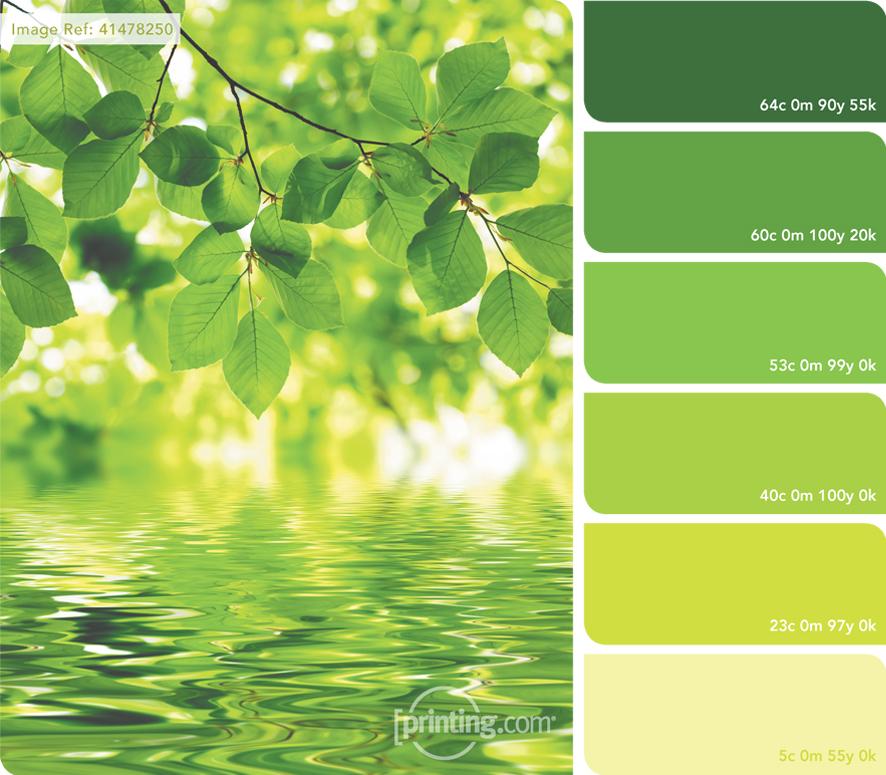 August Colour Inspiration Palette
