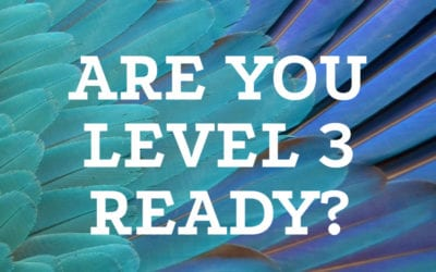 Are you Level 3 ready?