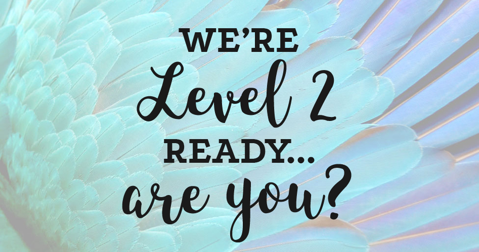 We're level 2 ready… are you?
